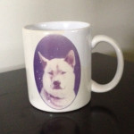 Mug Dog