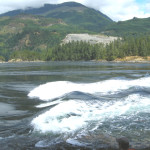 ANOTHER VIEW OF RAPIDS